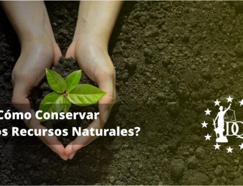 ¿Cómo Conservar los Recursos Naturales? | Energías Limpias